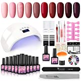 Gel Nail Polish Kit with 48W Nail Light,10 Colors Soak Off Gel LED Dryer Lamp DIY Home Nail Art Designs Manicure Tools