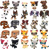 Random 3 PCS LPS Cat and Dog figures, will come with free 6pcs lps Accessories as a gift. LPS Rare Figures Collection Best Gift for Kids Collectable. Ship from USA, you can get it soon. It will be a suprise gift set. If any questions, please let us k...