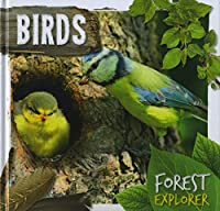 Birds (Forest Explorer)