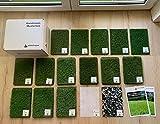 Steffensmeier Kunstrasen Teppich Michigan Musterbox | alle unsere Kunstrasen auf einen Blick | inklusive Zubehör | für Balkon, Garten | Meterware