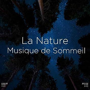 """!!!"""" La Nature Musique de Sommeil """"!!!"""