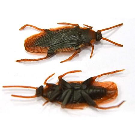 Große Kakerlake Haus Insektenfänger Spinnen Schaben Insektenfalle Ungiftige Box