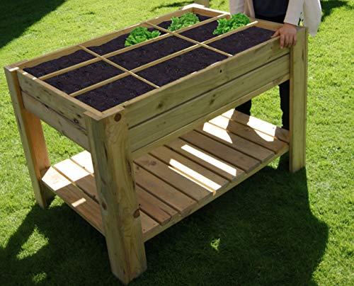 AD servicios Mesa de Cultivo Huerto Urbano con Bandeja y separadores 80x120x80 cm