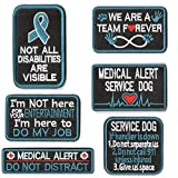WZT 6Pcs Not All Disabilities are Visible, Service Dog Do My Job Not for Your Entertainment, Medical Alert, If Handler is Down, We are A Team Forever, Do Not Distract Embroidered Patches (B(6Pcs))