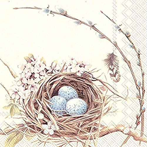 Boston International 20 graines 3 Plis déjeuner Serviettes en Papier, nid d'oiseau avec des Oeufs