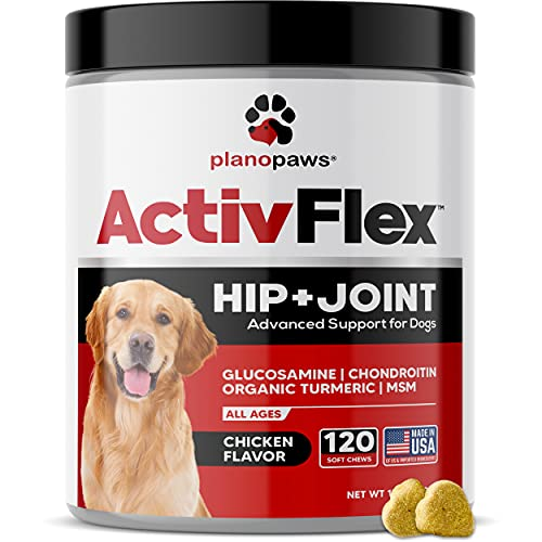 Glucosamine for Dogs Hip and Joint Supplement - Safe Joint Support for Dogs - Natural Dog Joint Supplement with Glucosamine Chondroitin MSM Turmeric - 120 Dog Arthritis Pain Relief Chews ActivTreats
