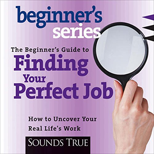 The Beginner's Guide to Finding Your Perfect Job audiobook cover art