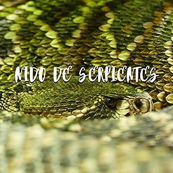 Nido de Serpientes(con Ruzz)