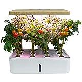 ZYCH Pianta Hydroponics Smart Garden Serra Idroponica per Piante Vaso Intelligente Grow Box Orto da Interno Coltiva Le Erbe Aromatiche Infissi