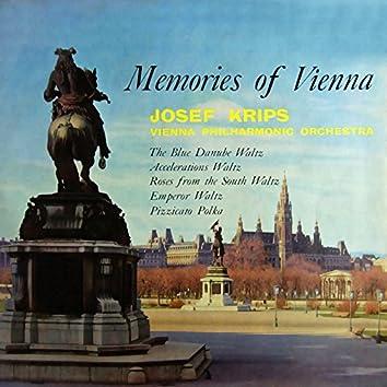 Memories of Vienna