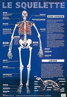 Le Squelette (Skeleton) (Laminated Poster)