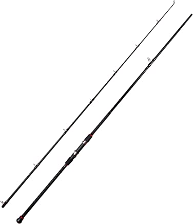 Fiblink Surf Casting Fishing Rod 2-Piece Graphite Travel...