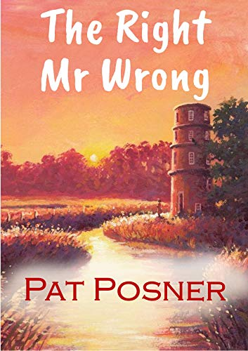 The Right Mr Wrong (English Edition)