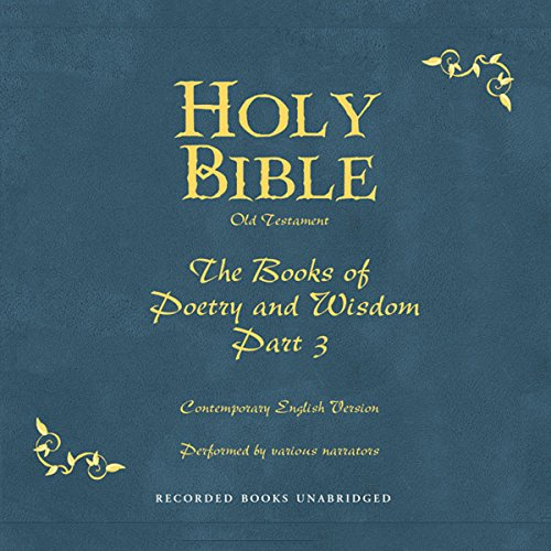 Holy Bible, Volume 13 audiobook cover art