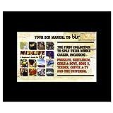 BLUR - Midlife Matted Mini Poster - 21x13.5cm
