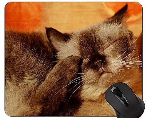 Mauspads und Orange Cat Cute Little Red Kätzchen Gaming Maus-Pads