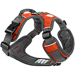 Embark Active Dog Harness, Easy On and Off with Front and Back Lead Attachments & Control Handle - No Pull Training, Size Adjustable and No Choke(Medium (58-77 cm, Orange)