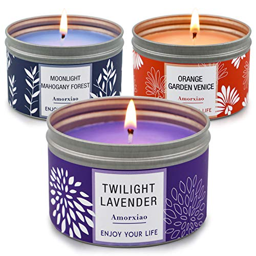 Candles for Home Scented, 100 Hour Burn Long Lasting Aromatherapy Candle, Highly Scented & Soy Jar Candle Gift Set - 3 Pack 4.6 Oz, Lavender | Orange Blossom | Mahogany Candle
