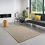 Carpet Studio Santa Fe Teppich Wohnzimmer 115x170cm, Teppich Beige für Schlafzimmer, Esszimmer & Wohnzimmer, Einfach zu Säubern, Weiche Oberfläche, Kurzflor - Beige