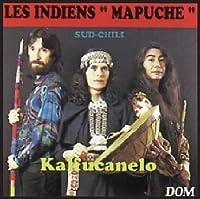 Les Indiens Mapuche Du Sud Chili
