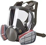 Holulo Full Face Cover Gas Mask for Panit,Full Face Respirator Reusable Organic Vapors Safety Respirator Cover