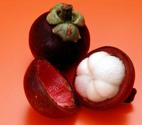 2016 New mangoustan Seeds, Reine riche en nutriments des fruits tropicaux, les graines de fruits, 10 Graines