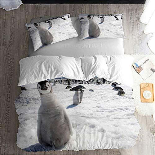 Ekhill Jon Antártida Glaciar Animal pingüino Ropa de Cama Set - Funda nórdica y 2 Funda de Almohada, Sábana, Conjunto 3/4 Piezas/Durable/Suave/Sin alergia (M,Single-4PCS-135×210cm)