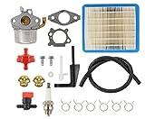 Carburetor Air Filter Spark Plug Fuel Hose Shut Off Valve Carb For Briggs & Stratton Craftsman Tiller Intek 190 6 HP 206 5.5hp Engine Motor 6.5 HP Intek Power Washer Go Kart Generator 791077 696981 -  MOTOKU