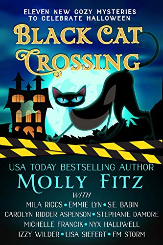 Black Cat Crossing: A Collection of 11 Cozy Mysteries to Celebrate Halloween by [Molly Fitz, Mila Riggs, Emmie Lyn, S.E. Babin, Carolyn Ridder Aspenson, Stephanie  Damore, Michelle Francik, Nyx Halliwell, Izzy Wilder, Lisa Siefert]
