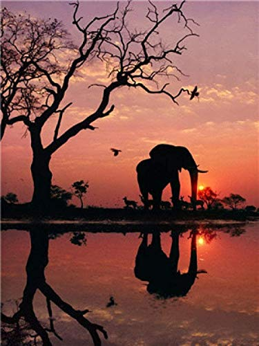 huili 1000 Piece Adult Children's Elephant Landscape DIY 75 X 50Cm Wooden Assembly Puzzle Toys for Adults Children Educational Games Toys