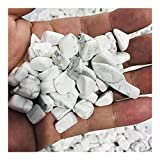 YELVQI Cristal de curación Los especímenes de Cristal de Pino Blanco Natural curan el Cristal con Piedra Natural y Decoraciones de Acuario Mineral (Size : 100g)