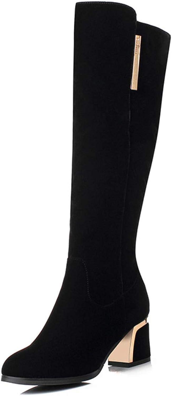 DANDANJIE Knie High Stiefel Frauen Winter Warm Snow Stiefel High Heel mit Zip Long schuhe Größe schwarz