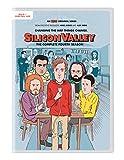 Silicon Valley: The Complete Fourth Season [Edizione: Stati Uniti] [Italia] [DVD]
