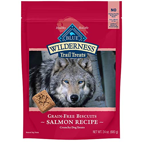 Blue Buffalo Wilderness Trail Treats High Protein Grain Free Crunchy Dog Treats Biscuits, Salmon Recipe 24-oz Bag