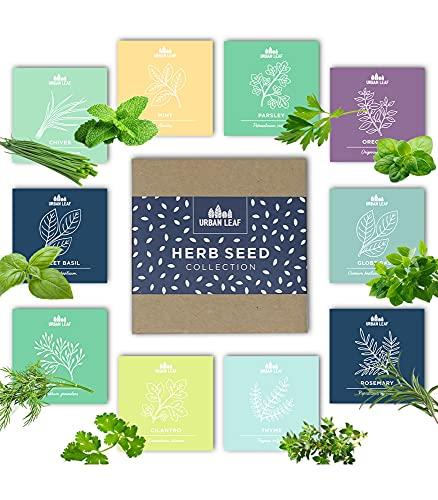 Herb Garden Seeds Kit
