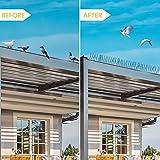 Zoom IMG-2 telgoner dissuasori per piccioni inox