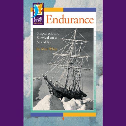 Endurance cover art