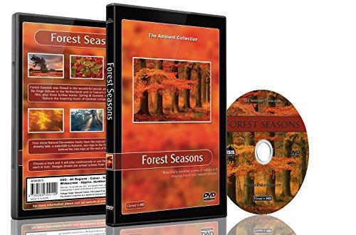 Natur DVD - Wald Jahreszeiten – Landschaft aus allen Jahreszeiten aus dem Wald mit Musik und natürlichen Geräuschen