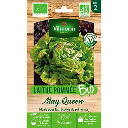 Vilmorin Sachet graines Laitue Pommée May Queen Bio - Lactuca Sativa
