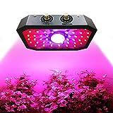 YOYTOO 1000 W Led Indoor Grow Light, Regolabile Full-Spectrum Doppio Interruttore Pianta Luce, Può essere utilizzato per Serra Verdure E Fiori