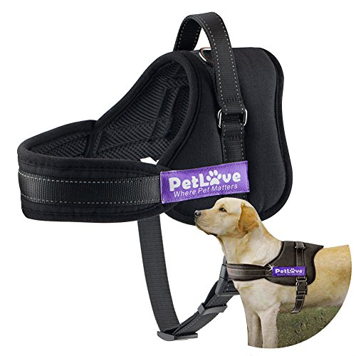 Pet Love Dog Harness, Soft Leash...