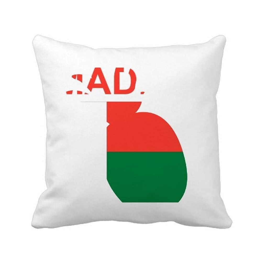 ステープルホール軽食マダガスカル島カントリーラブに パイナップル枕カバー正方形を投げる 50cm x 50cm
