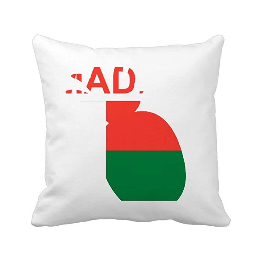 組み合わせるアジャ欠如マダガスカル島カントリーラブに パイナップル枕カバー正方形を投げる 50cm x 50cm