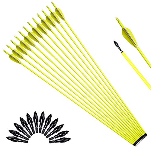 XGeek 30in Carbon Arrow Shafts, Practice Arrows for Target Shooting