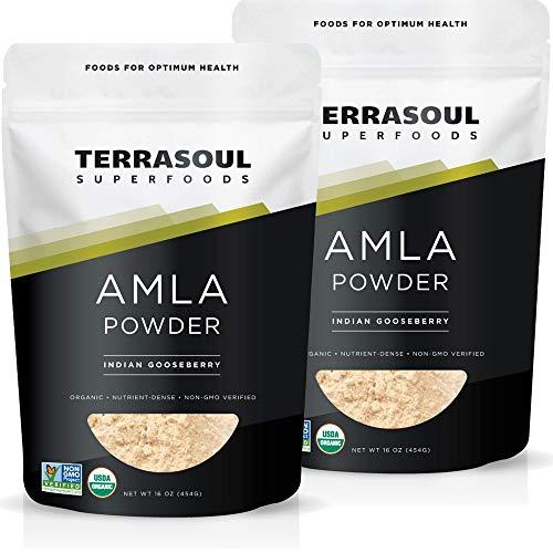 Terrasoul Superfoods Organic Amla Berry Powder (Amalaki), 2 Lbs - Rich in Antioxidant Vitamin C | Supports Immunity