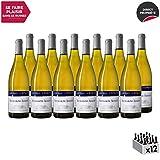 Bourgogne Aligoté Blanc 2017 - Château d'Etroyes - Vin AOC Blanc de Bourgogne - Cépage Aligoté - Lot de 12x75cl