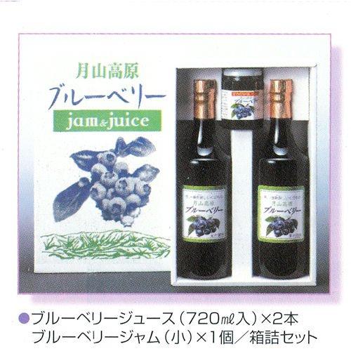 国産無農薬栽培 ブルーベリージュース 720ml2本・ジャム(180g)1個セット