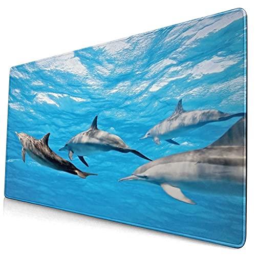 Großes dekoratives Gaming-Mauspad,Unterwasserfotografie von Delfinen, die glück,lange Computermausmatte mit rutschfester Gummibasis für Büro/Spiele/Zuhause