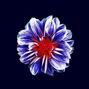 Sweet Flower Child