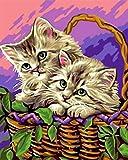 Pintar por Numeros Gato en canasta de flores DIY Lienzo Pintura al óleo, para Adultos Niños con Pinceles y Pinturas Decoraciones para el Hogar 40×50cm Sin Marco